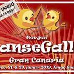Bli med til dans, sol, bad til Gran Canaria 12-26 januar 2019